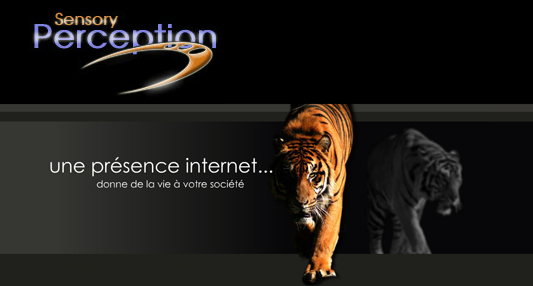 Creation Sites internet